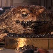 garden party shortfilm toad