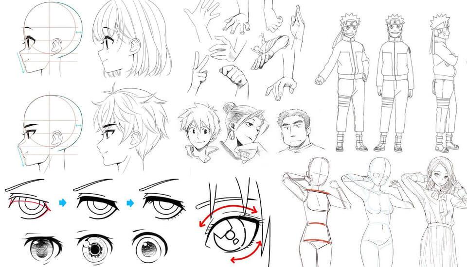 Recursos Gratuitos Para Aprender A Dibujar Manga Anime